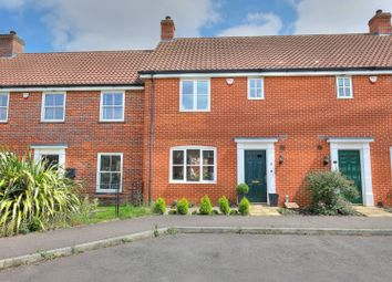 Thumbnail 3 bed terraced house for sale in Ryefield Road, Norwich
