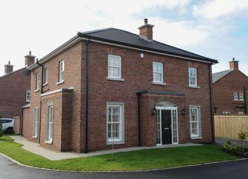 Thumbnail 5 bed detached house for sale in Kings Oak Mews, Maze, Lisburn