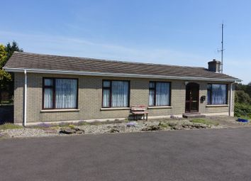 Thumbnail 4 bed bungalow for sale in 'four Winds', Ballyboggan Lower, Castlebridge, Wexford County, Leinster, Ireland