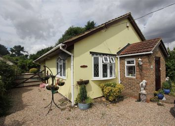 Thumbnail 3 bed detached bungalow to rent in Newhouse Avenue, Wickford, Essex