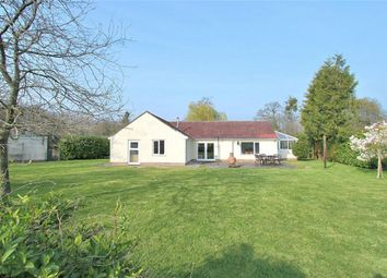 Thumbnail 4 bed detached bungalow for sale in Rockhampton, Berkeley, Gloucestershire
