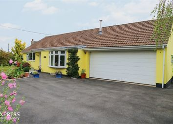 Thumbnail 3 bed detached bungalow for sale in Rye Park, Beaford, Winkleigh, Devon