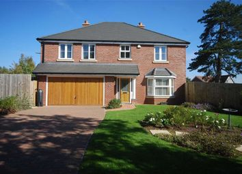 Thumbnail 4 bed detached house for sale in Belgravia Gardens, Hereford, Herefordshire
