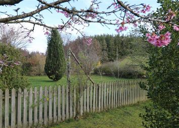Thumbnail Land for sale in Pluscarden, Elgin