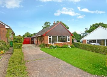 Thumbnail 3 bed detached bungalow to rent in Bindon Road, Exeter, Devon