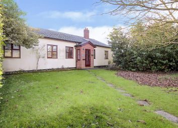Thumbnail 4 bed detached bungalow for sale in Magpie Lane, Little Warley, Brentwood