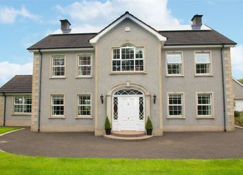 Thumbnail 4 bed detached house for sale in Ballylummin Road, Ahoghill, Ballymena, County Antrim
