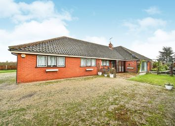 Thumbnail 4 bedroom detached bungalow for sale in Holly Farm Road, Reedham, Norwich
