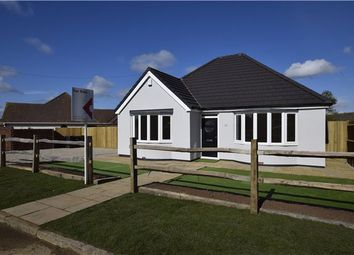 Thumbnail 2 bedroom detached bungalow for sale in Grand Avenue, Bexhill-On-Sea, East Sussex