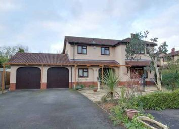 Thumbnail 4 bedroom detached house for sale in Verbena Way, Telford, Shropshire