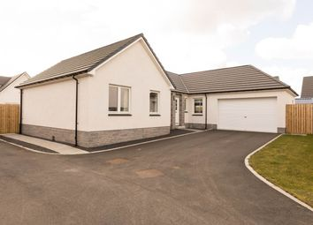Thumbnail 4 bed bungalow for sale in Destiny Drive, Scone, Perth
