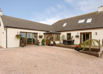 Thumbnail 4 bed cottage for sale in Blakelyhill Farm, St. Andrews Road, Largoward, Leven