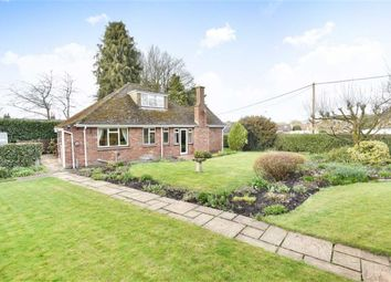 Thumbnail 4 bed detached bungalow for sale in The Canney, Chiseldon, Swindon