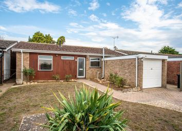 3 bed detached bungalow for sale in Westerns End, Brantham, Manningtree CO11