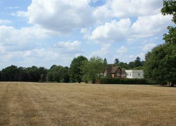 Thumbnail 6 bed detached house to rent in Ockham Lane, Cobham, Surrey