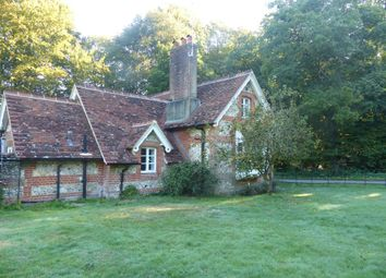 Thumbnail 2 bed cottage to rent in Well Lane, Bentworth, Alton