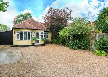 Thumbnail 4 bedroom bungalow for sale in Collier Row, Romford, Essex