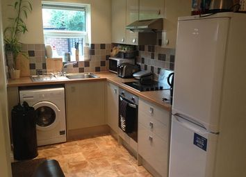 3 bed terraced house to rent in Oakland Road, Hillsborough, Sheffield S6