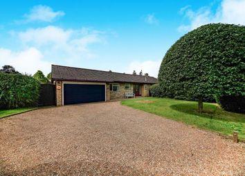 Thumbnail 4 bedroom bungalow for sale in Uplands Road, Kenley, Surrey