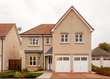 Thumbnail 5 bed property for sale in David Farquharson Road, Blairgowrie