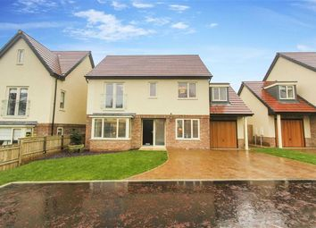 Thumbnail 4 bed detached house for sale in Morwick Road, Warkworth, Northumberland
