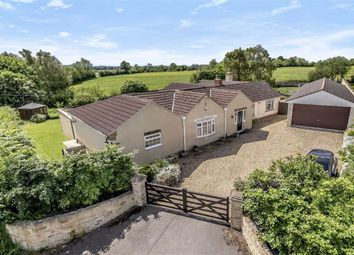 Thumbnail 5 bed bungalow for sale in Goatacre Lane, Goatacre, Wiltshire