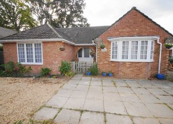 Thumbnail 4 bed bungalow for sale in Station Road, West Moors, Ferndown, Dorset