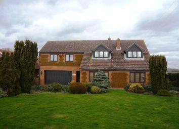Thumbnail 4 bed detached house to rent in Lynn Road, Southery, Downham Market