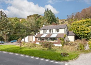 Thumbnail 3 bed property for sale in Plynlimon House, Pantmawr, Llanidloes