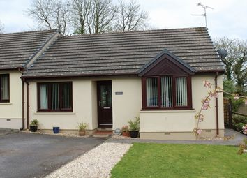 Thumbnail 2 bed bungalow to rent in Arosfa, 21 Picton Close, Templeton