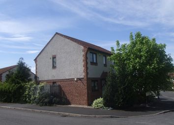 Thumbnail 2 bed semi-detached house to rent in St Augusta View, Carlisle