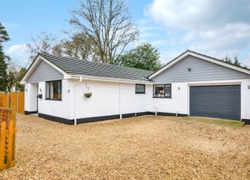 Thumbnail 3 bed bungalow for sale in Denewood Copse, West Moors, Ferndown, Dorset
