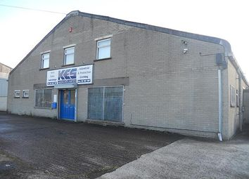 Thumbnail Warehouse to let in 8 Flush Park, Lisburn, County Antrim