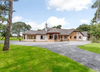 Thumbnail 4 bedroom bungalow for sale in Feabuie, Culloden Moor, Inverness