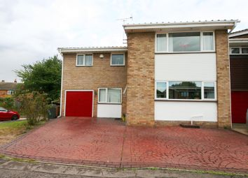 Thumbnail 4 bed property to rent in Wallasea Gardens, Springfield, Chelmsford