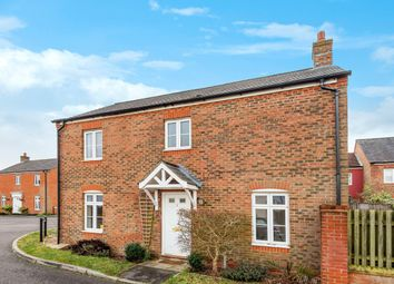 Thumbnail 3 bed detached house for sale in Small Close, Petersfield