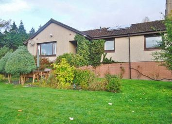 Thumbnail 4 bedroom detached bungalow for sale in Kirk Brae, 35 High Street, Clackmannan