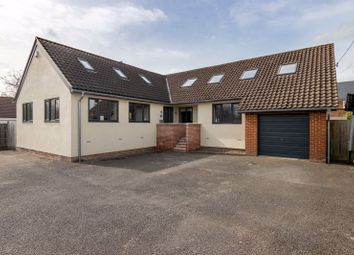 Thumbnail 5 bed detached bungalow for sale in Somerton Road, Street