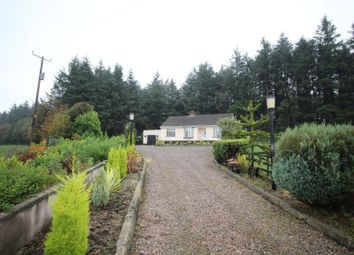 Thumbnail 3 bed bungalow to rent in Monument Road, Carrickfergus