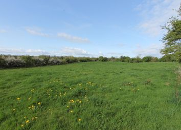 Thumbnail Property for sale in Townsfields, Cloughjordan, Tipperary