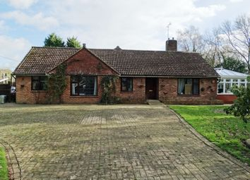 Thumbnail 4 bed detached bungalow for sale in The Common, Sissinghurst, Cranbrook