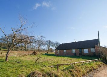 Thumbnail 3 bedroom detached bungalow for sale in Broadhembury, Honiton