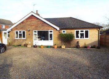 Thumbnail 4 bed bungalow for sale in Horning, Norwich, Norfolk