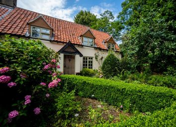Thumbnail 4 bed semi-detached house for sale in The Street, North Lopham, Diss