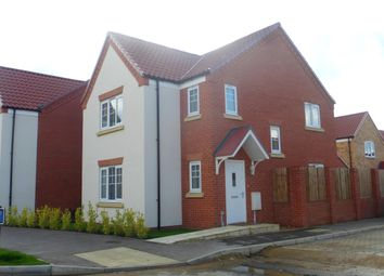 Thumbnail 3 bed property to rent in Dove Avenue, Wymondham