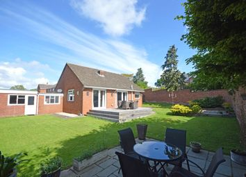 Thumbnail 2 bed bungalow for sale in Leighdene Close, St. Leonards, Exeter