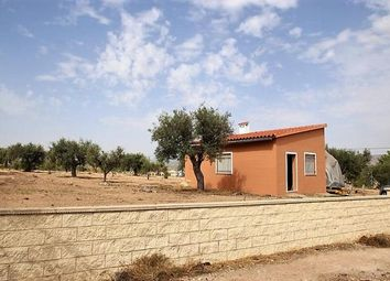 Thumbnail 1 bed villa for sale in Spain, Valencia, Alicante, Salinas