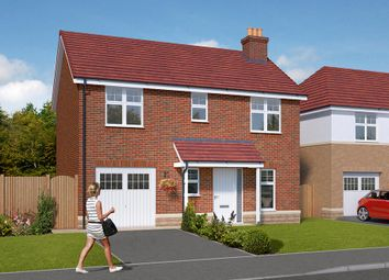 "Thumbnail 3 bed detached house for sale in ""The Morton "" at Regency Park, Ingleby Barwick, Stockton-On-Tees"