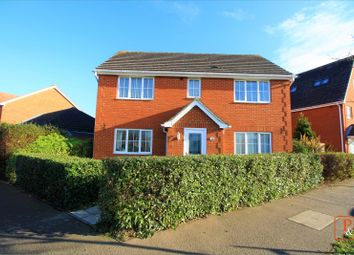 Thumbnail 4 bed detached house to rent in Titus Way, Colchester, Essex