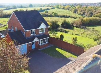 Thumbnail 4 bed detached house for sale in The Hollies, Newton, Rugby